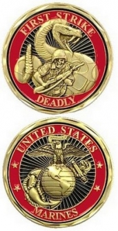 Challenge coins from this army navy store